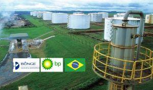 Brasil etanol BP Bunge Bioenergia