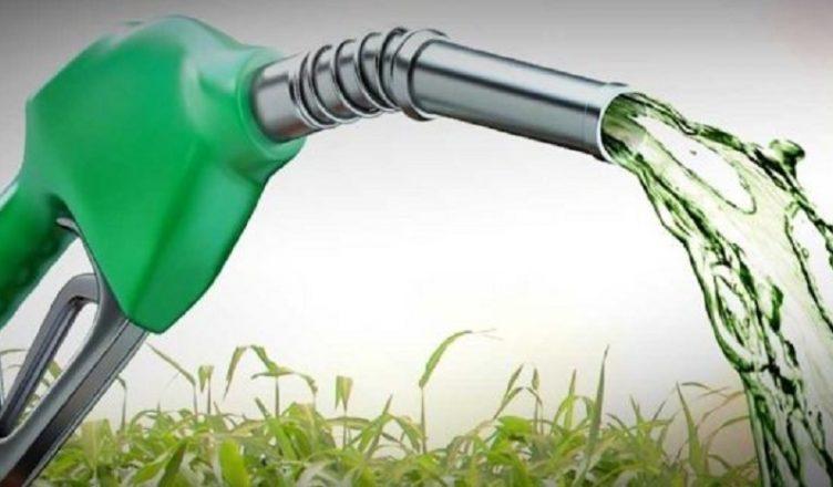 Bionergia faturará 4 bi de reais