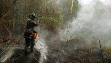 1 bi do fundo da Petrobras para Amazônia