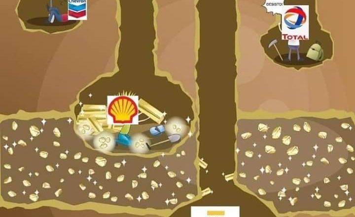 Petrobras privatização governo