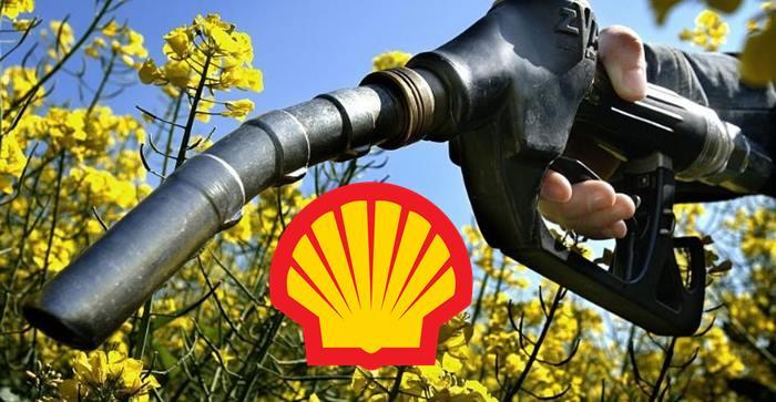 Shell entra em novo mercado