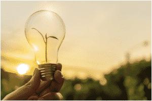 Inove com ideias de sustentabilidade no seu negócio