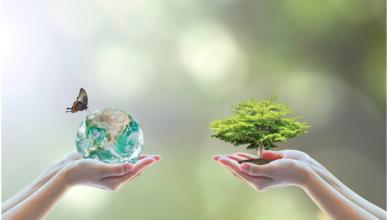 sustentabilidade economia empresa negócios