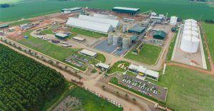 Demanda por etanol cresce e mais de 20 usinas estão ampliando sua capacidade de produção