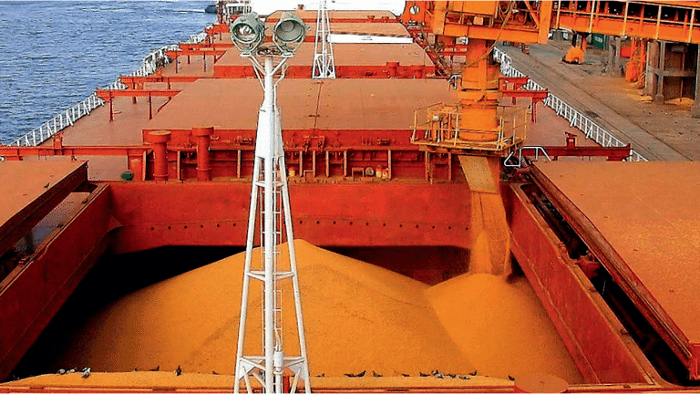Milho Mato Grosso Exportações Brasil Economia