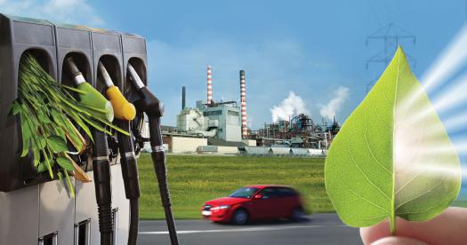 Diesel Verde ANP Biocombustível