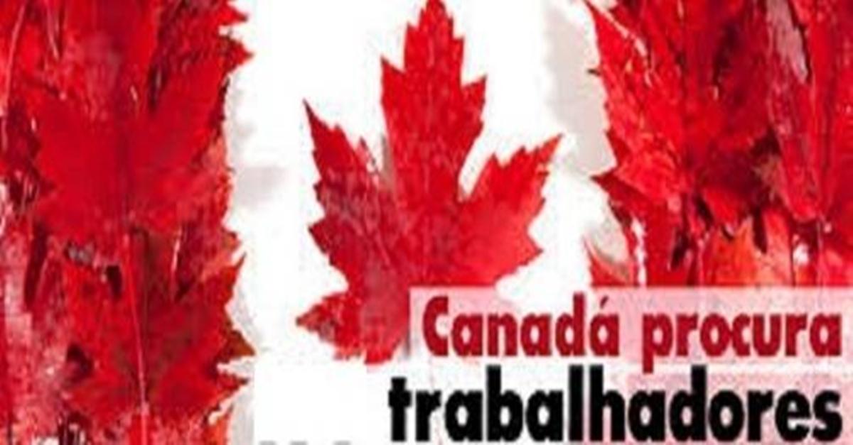 Canadá recruta brasileiros para preencher 250 vagas de emprego