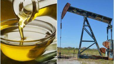 petróleo etanol motoristas