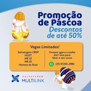 Multilink Banner 336 x 280