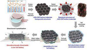 Bateria Coreanos Celulares
