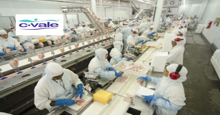 Mesmo com pandemia 2,2 mil vagas de emprego serão abertas pela na C.vale no Paraná