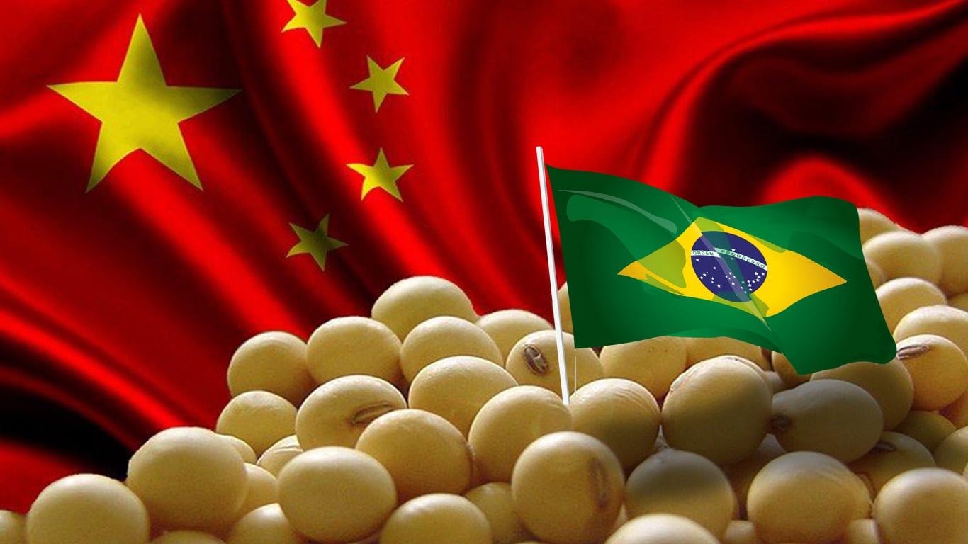 soja, china, brasil, coronavírus, alimentos