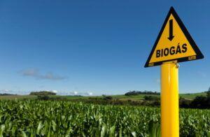 Biogás, energia, produção
