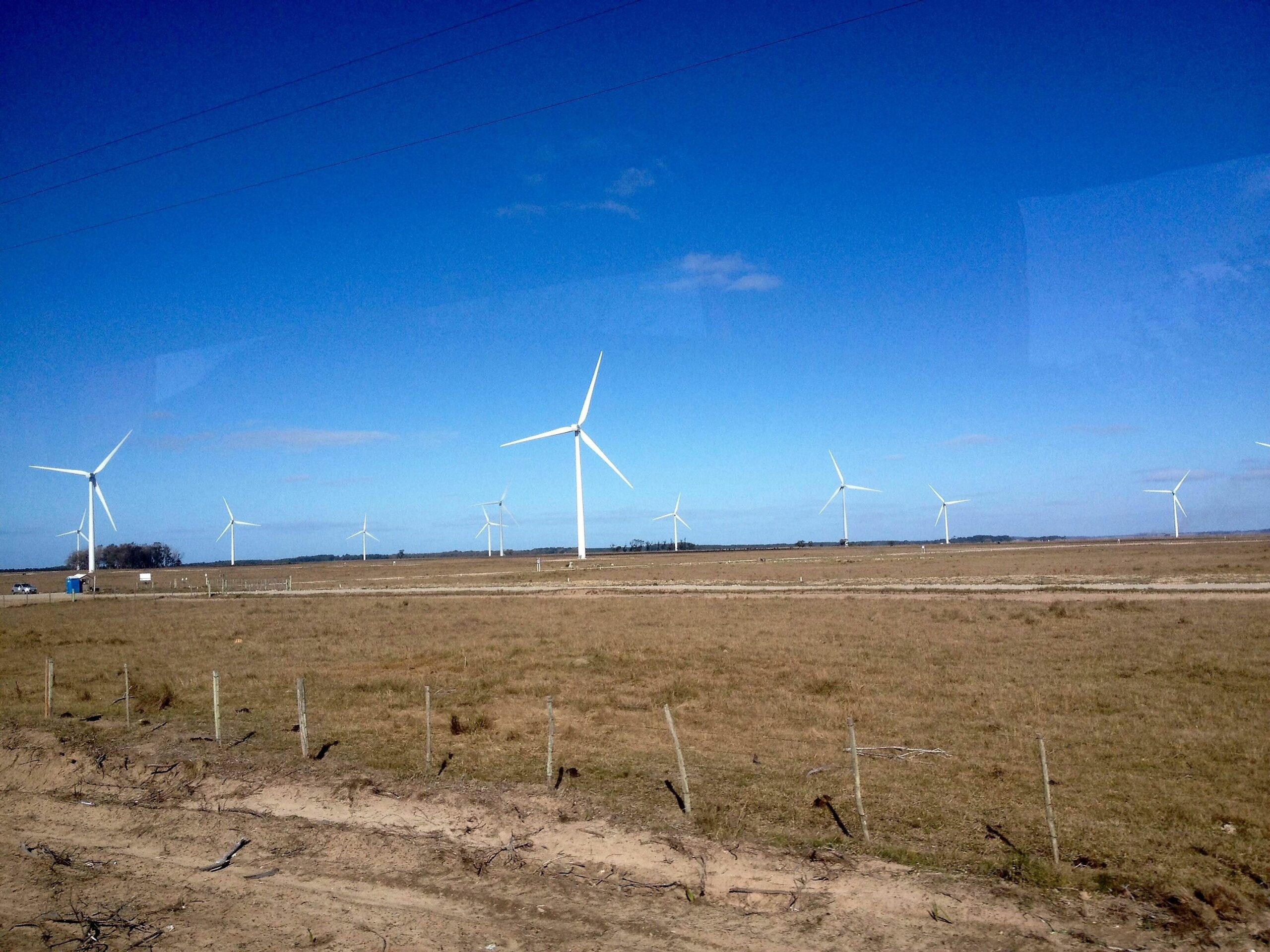 Omega Energia fecha contrato de R$ 500 mi para adquirir parque eólico da Eletrobras