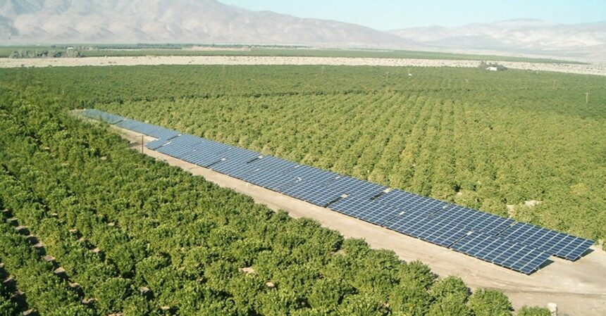 energia-renovável-usina-fotovoltaica-bahia