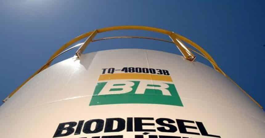 leilão de biodiesel ANP