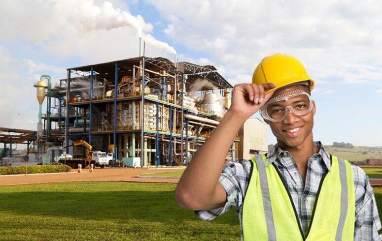 Usina de açúcar e etanol inicia processo seletivo de emprego nesta terça-feira (15) para trabalhadores de ensino médio e nível técnico