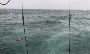 Navio - tripulantes - acidente