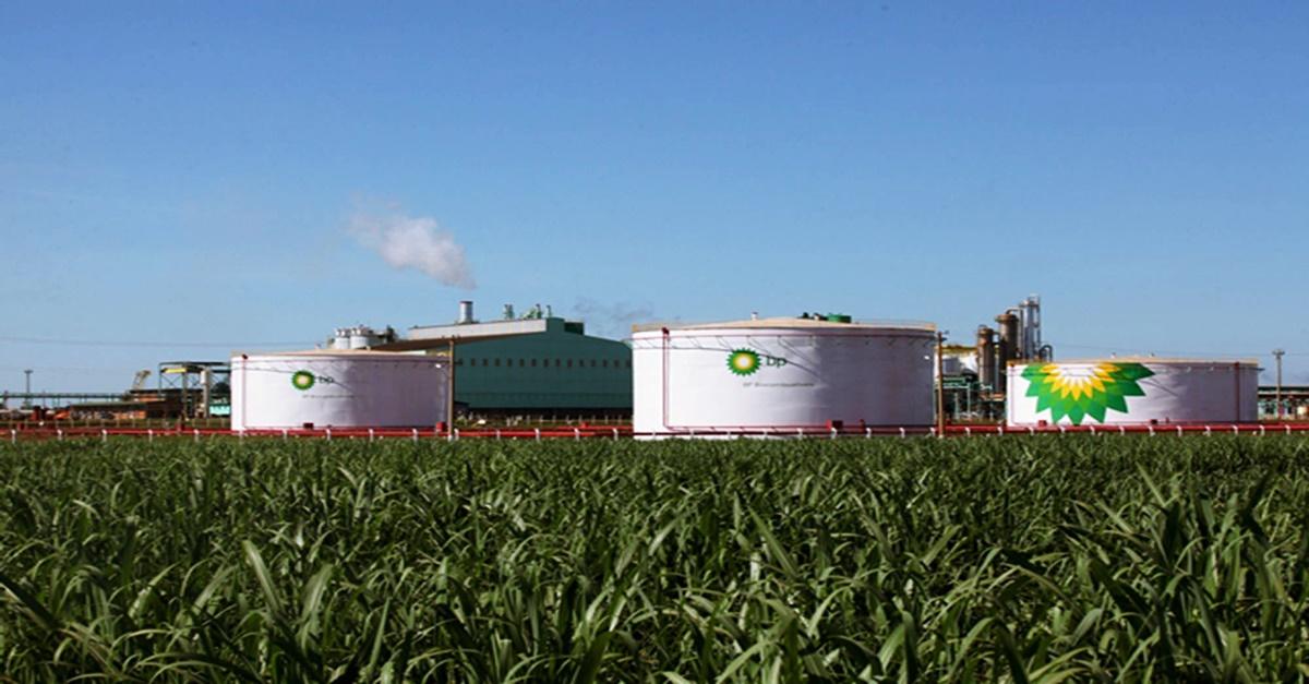 etanol ; BP ; canaviais; açúcar ; usina