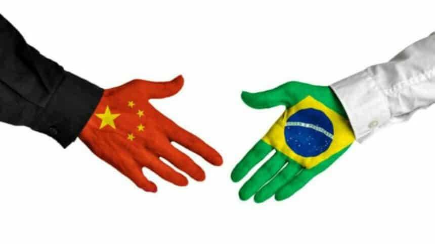 Chins - investimentos - exportações