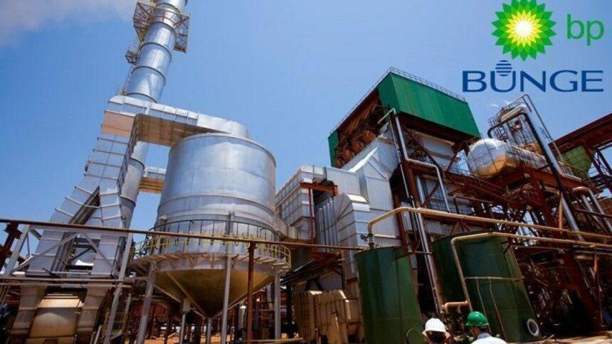 Etanol, BP Bunge, emprego