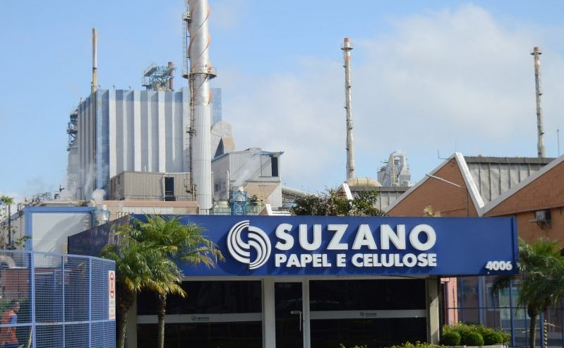 Papel e celulose, investimentos, Suzano