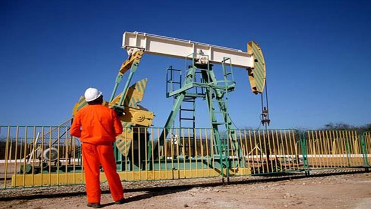 Petrobras - campos de petróleo onshore - anp