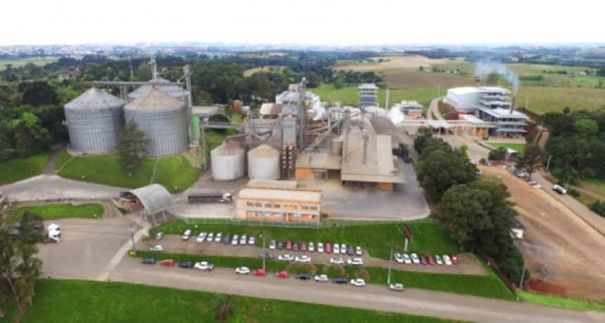 usina - biodiesel - GO