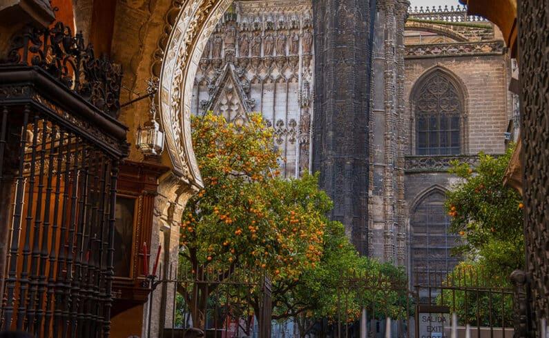 Espanha - energia - laranjas