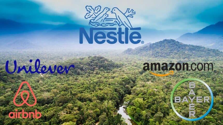 Nestlé - Heineken - Ambev - coca cola - Airbnb - emprego - vagas - floresta tropical