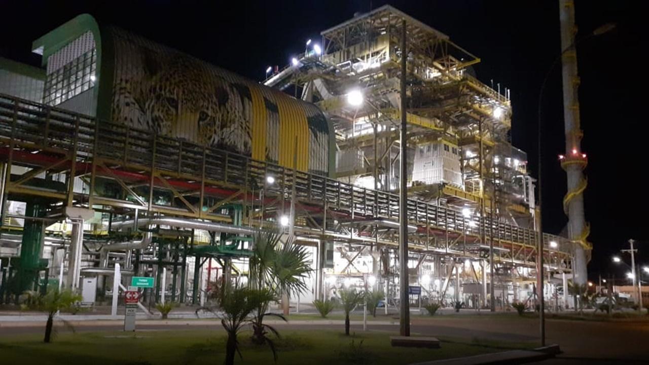 usina - Eldorado brasil - fábrica de celulose - onça pintada - etanol - preço
