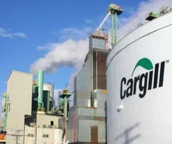 Cargill - estágio - vagas