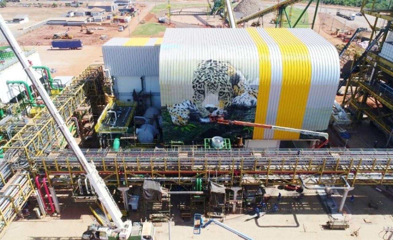 usina - biomassa - MS - vagas de emprego