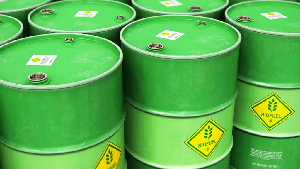 biodiesel cocamar construção usina Paraná Investimentos