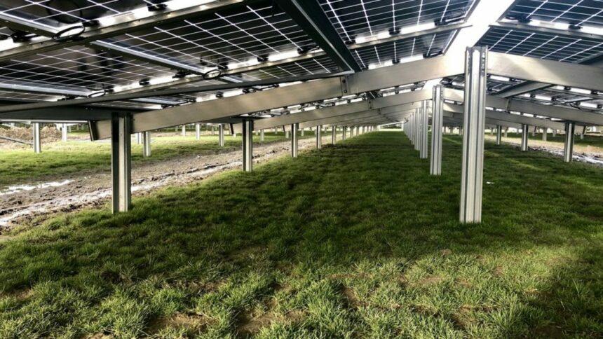 Atlas-Renewable-Energy - energia solar - usina - MG - investimento
