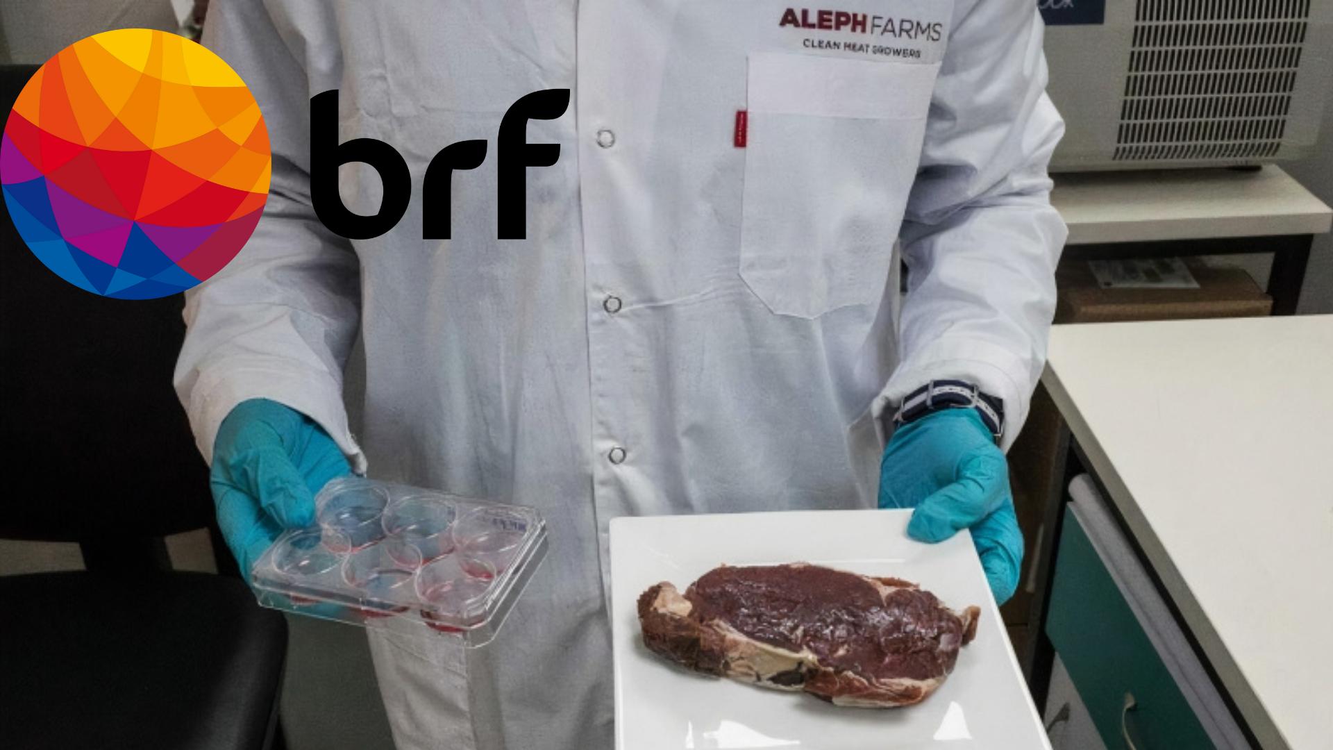 BRF – startup