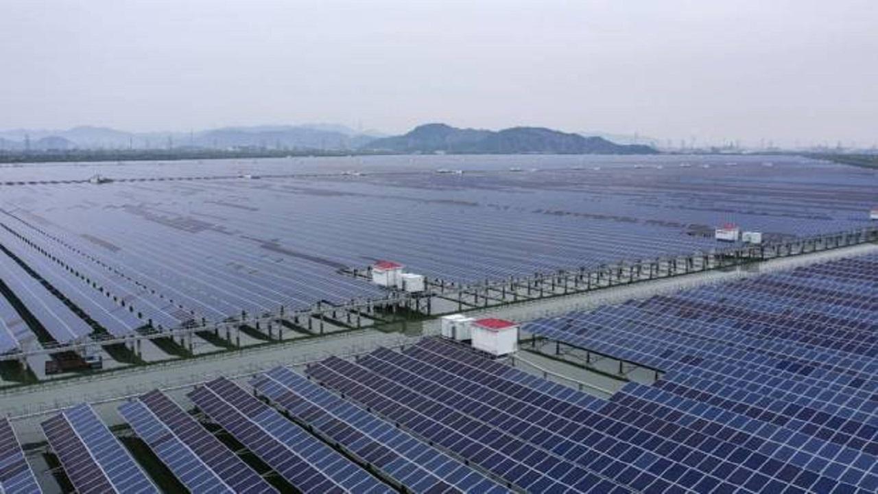 Petrobras - BR distribuidora - energias renováveis