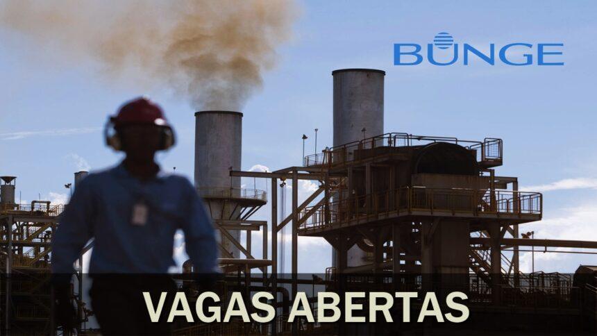 usina - emprego - bunge - fábrica - rj - sp - trainee - pe - to - go - mt - vagas