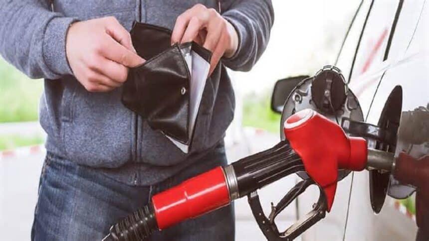 Paraná - combustíveis - pneus - tecnologia - empresa - Gestran