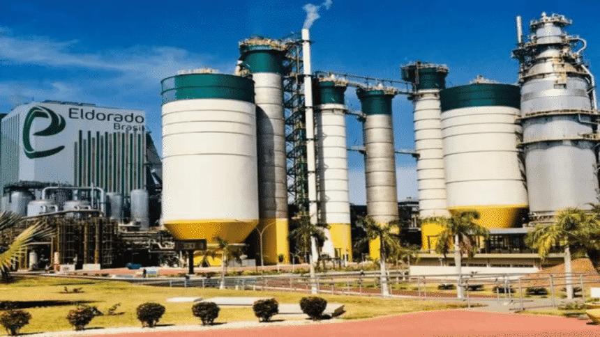 Fábricas – celulose – empregos – Mato Grosso do Sul