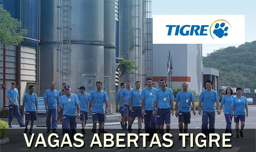 vagas - rj - sp - Tigre - estágio
