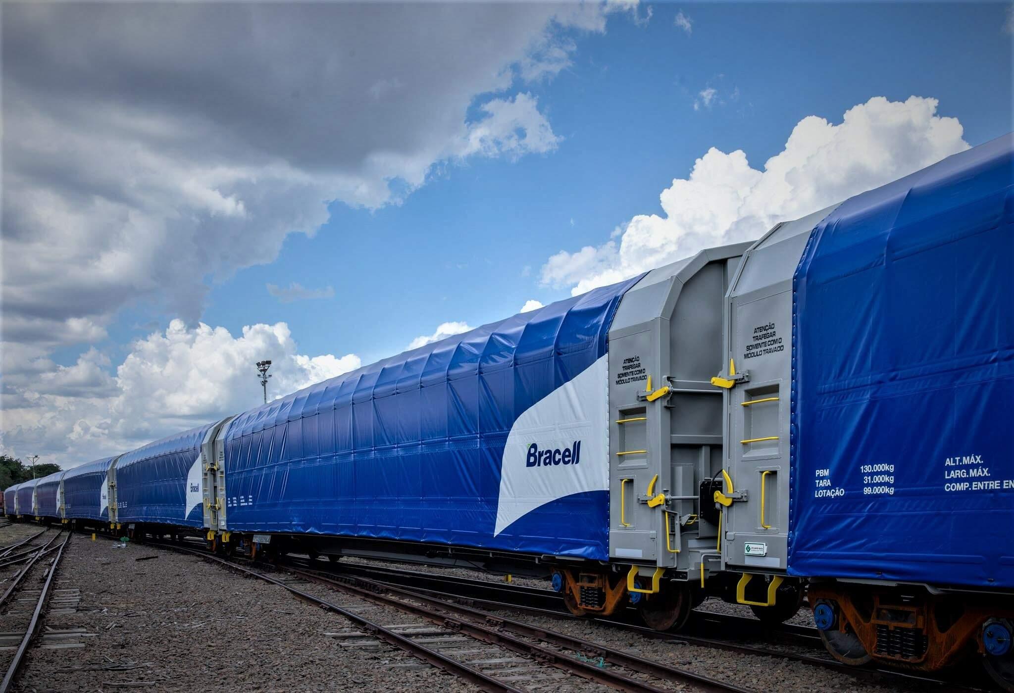 Bracell - ferrovia - construção